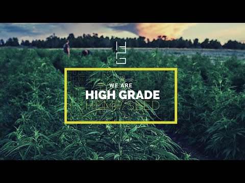 High Grade Hemp Seed | About Us