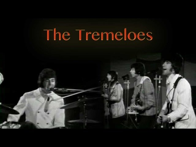 the-tremeloes-silence-is-golden-the-store-for-music