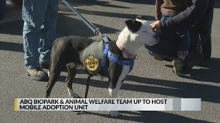ABQ BioPark hosts Animal Welfare mobile adoption