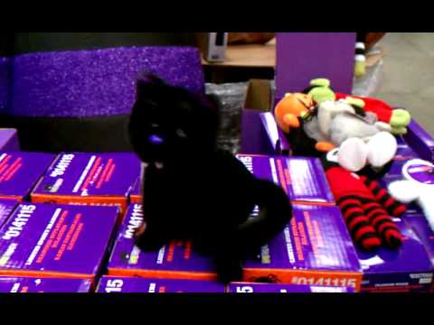 Screaming crazy spinning Halloween stuffed toy cat