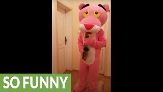 Pink Panther plays his own theme song on saxophone
