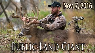 Public Land Monster Buck - DIY Iowa Bowhunt | Midwest Whitetail