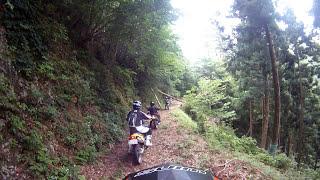 やまびこオフ車部林道探索 名田庄 仁吾谷線1