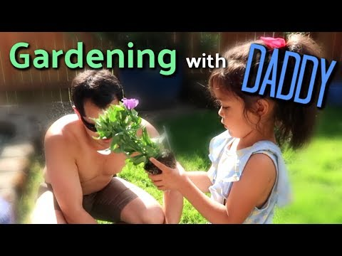 Learning How To Garden with Daddy! - itsjudyslife thumbnail