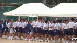 祝・苦楽園中学校創立40周年27(運動会・だんじり)
