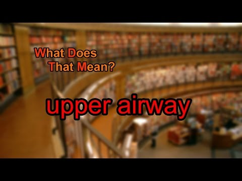 What does upper airway mean?