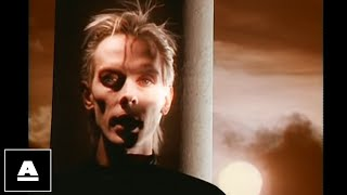 Watch Peter Murphy Cuts You Up video