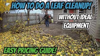 How to Do a Leaf Cleanup Without Ideal Equipment! | How to Price a Cleanup Job!