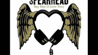 Michael Franti Ft. Spearhead - Say hey(I Love You)
