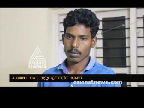 Kerala man arrested for growing ganja plant at Home | FIR 6 MAR 2019