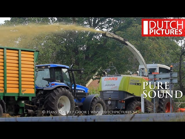 Mais hakselen 2016 | Claas Jaguar 850 | Olminkhof, Lochem | Maize harvest | Chopping corn