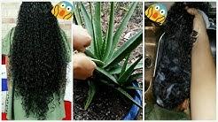All Natural Fresh Aloe Vera Regrowth Shampoo To Increase Growth Stop Dryness Breakage Baldness