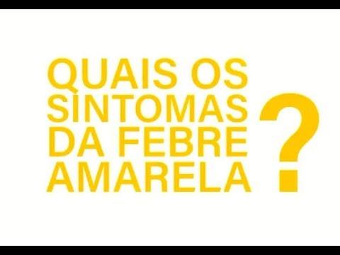 Quais os sintomas da febre amarela?