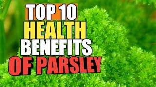 Top 10 Health Benefits Of parsley, Health Care Tips