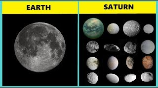 THE MOONS IN OUR SOLAR SYSTEM. How many moons does each planet have?