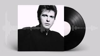 Peter Gabriel - This is the picture (Excellent birds)