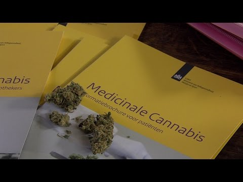 Dutch system is failing its patients - Medicinal Cannabis as a Human Right | Part 3/4