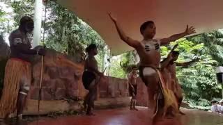 Farewell Pamagirri Dance, Rainforestation Nature Park, Kuranda, Australia, 5 November 2016