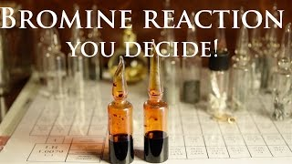 Bromine Reactions - You Decide!