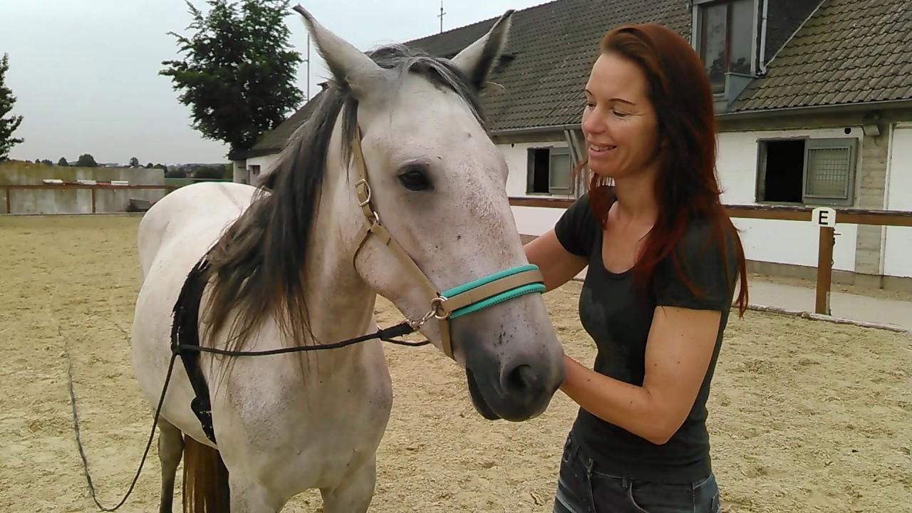 Sandra Schneiders Freund