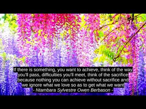 Cindy Ann Peterson 4 Top Motivation Quotes