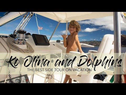 Ko Olina Resorts and a Dolphin Tour on Oahu with Kids