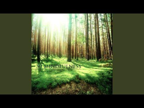 Mindful Meditation Music