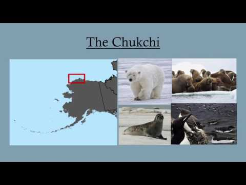 Marina Cucuzza - Acoustic Substrate Classification of the Eastern Chukchi Sea