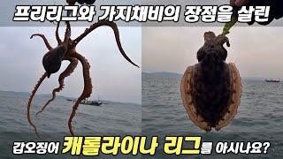 갑오징어 채비 추천, 가지채비에 프리리그 기능까지?? …
