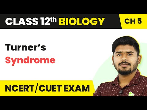 Turner's Syndrome | Principles Of Inheritance And Variation | Class 12th | Biology | In Hindi