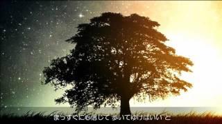 缶ビール/柴田淳 Jun Shibata〈ピアノ弾き語り〉Covered by Nontan
