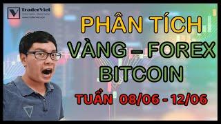 ✅ Phân Tích VÀNG-FOREX-BITCOIN Theo Price Action - Nhiều Kèo Thơm - Tuần  08/06-12/06