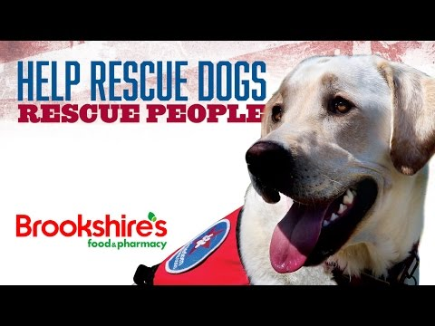 Help Rescue Dogs Rescue People
