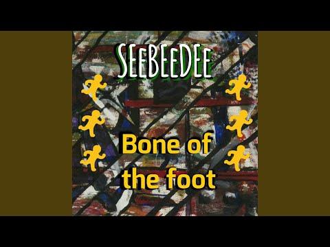 Bone of the foot