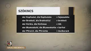 Szólalj meg! – németül, 2017. február 17.