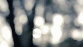 Fidan Abdullaev -mshuntil(красивая арабская песня солло)