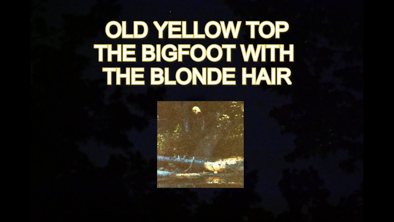 OLD YELLOW TOP, THE BIGFOOT WITH THE BLONDE HAIR