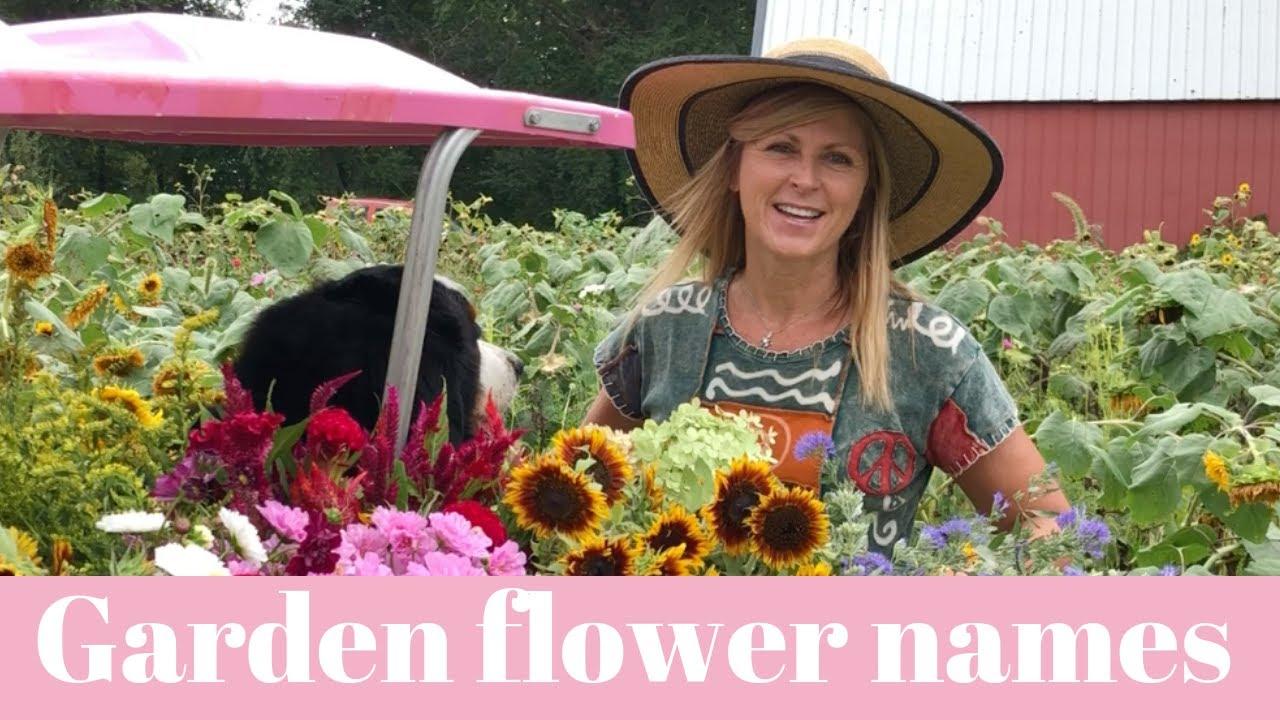 Garden Flower Names From Our Harvest At Cranbury Fields Flower