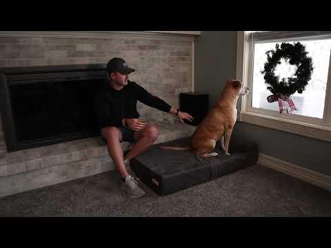 big-barker-dog-bed-review