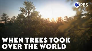 When Trees Took Over the World