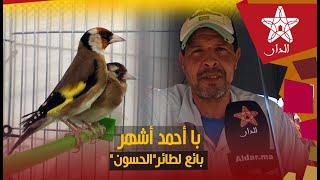 """با أحمد أشهر بائع لطائر""""الحسون"""" في المغرب واحد منهم تباع ب2 ديال المليون"""