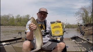 Catching Channel Catfish on the River with FIBER NUGGETS!