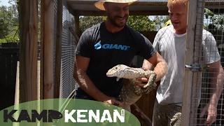 Australian Monitor Lizards!: Kamp Kenan Bonus