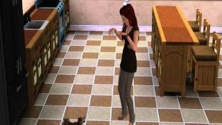 Sim Training Her Dog