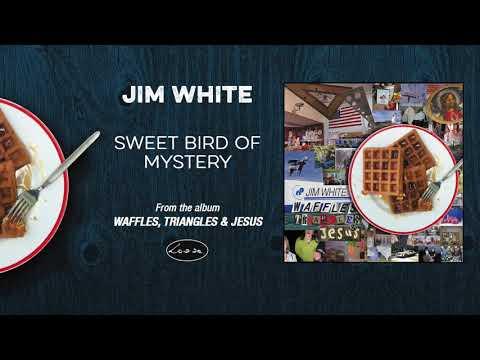 JIM WHITE - Sweet Bird Of Mystery