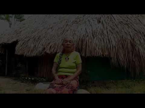 Mensaje Abuela Lucía Yagari - Pueblo Embera, Colombia.