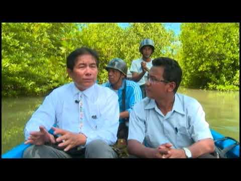 Rakhine Environment, Fisheries Law - Green Way