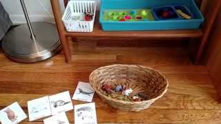 ShelfWork Series: Toddler Learning Shelf-Language Activity