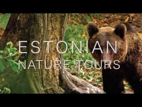 Estonian Nature Holidays with Speyside Wildlife