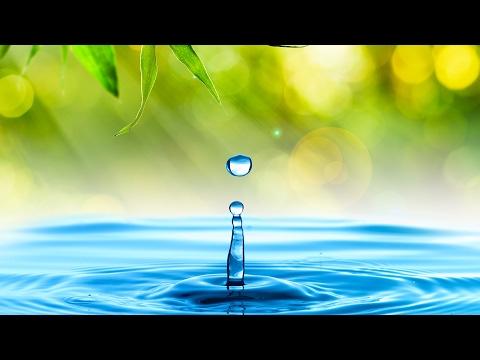 Música Relajante con Sonido de Agua | Música de Relajación y Meditación | Música Zen para Relajarse